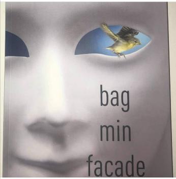 Bagminfacade.pixlr